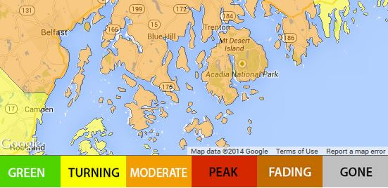 MI-foliage-map-2014